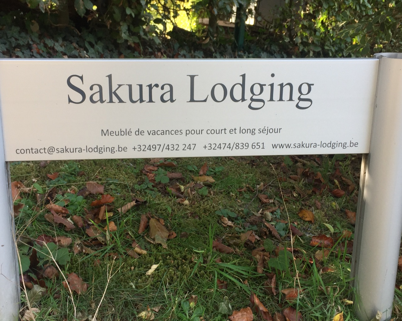 Sakura Lodging | Brabant | Rue des corbeaux31